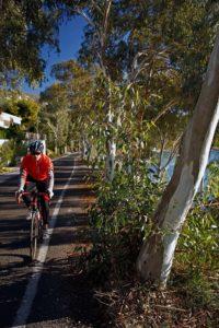 Cycling the sea route on Aegina Island