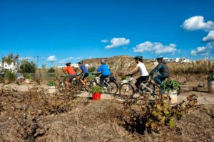 Leisure Cycling around Mykonos Island during our Private Cycling Tour