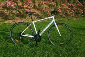 Bike Rentals in Athens - Women Fit Aluminium Fitness Bike Bicycle - Specialized Vita 2017