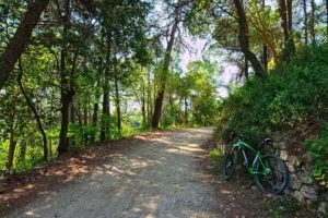 Forest roads and a mountain bike during a MTB trip in Greece
