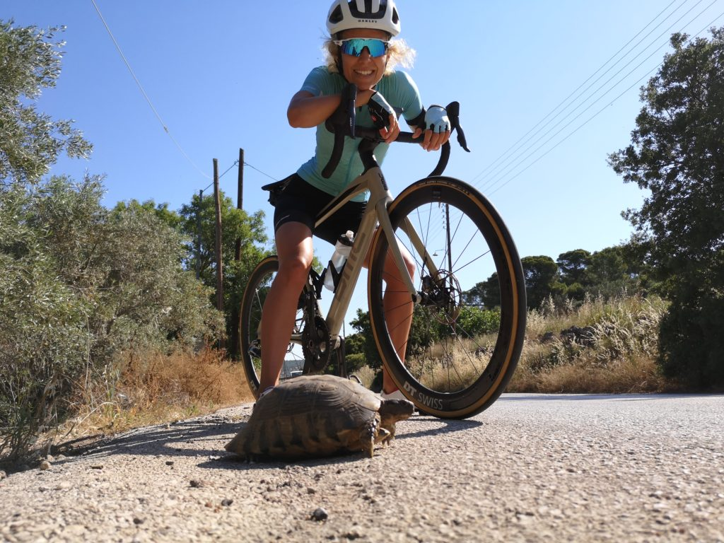 Turtle and a cyclist in Porto Rafti