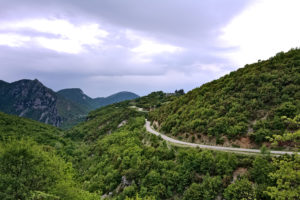 Cycling forest road in Epirus