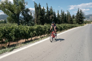 Female cyclist on her road bike cycling through vineyards of Greece