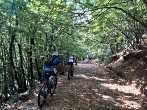 Mountain Bikers are cycling through the Olympus deep forest