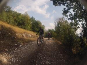 Mountain Biking in Olympus area